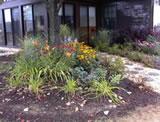 Moon garden post 2
